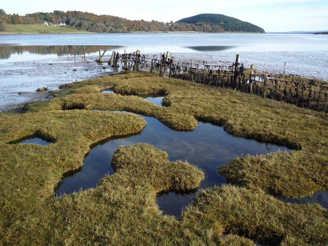 Foreshore of Munlochy Bay