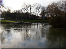 NZ3956 : Frozen pond in Mowbray park by Freethinker