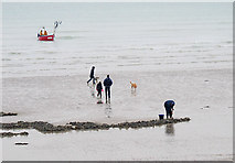 TQ1602 : Digging, fishing, walking and wagging at Worthing by Roger  Kidd
