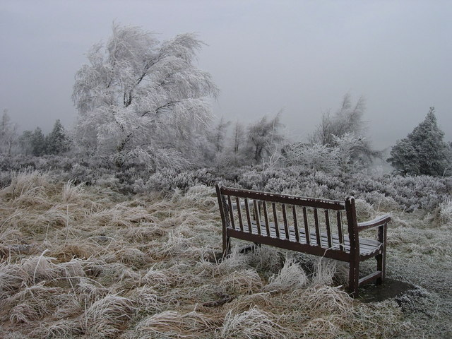 Bench in hoar frost at Cowhouse Bank