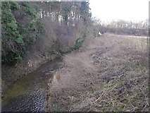 TF8707 : River Wissey from Erne Ford Bridge by Alison Haines