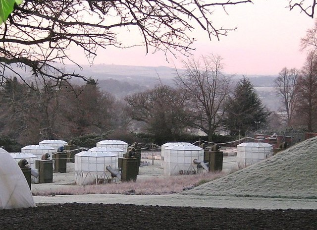 Frozen glasshouses at Close House laboratories