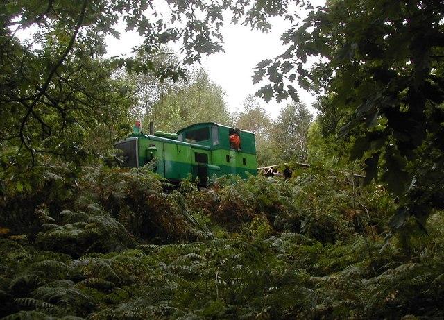 Construction of the new railway through Beddgelert Forest