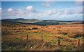 SC4089 : Moorland west of Mountain Box by Trevor Rickard