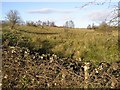 H0044 : Drumcully Townland by Kenneth  Allen