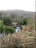 V9180 : Galway's River near Galway's Bridge by Ulrich Hartmann