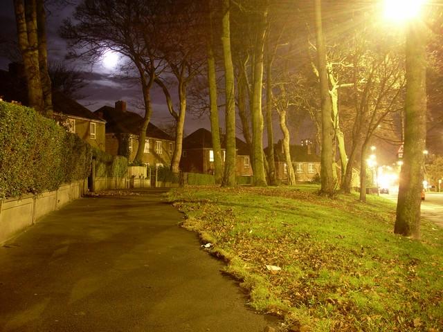 Public pathway by Benwell Lane