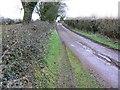 ST6050 : Redhill Lane, towards East End Lane, near Emborough by Brian Robert Marshall