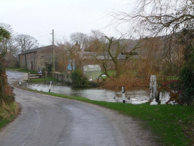 East Creech: lane and pond