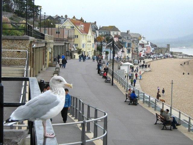 Marine Parade Lyme Regis