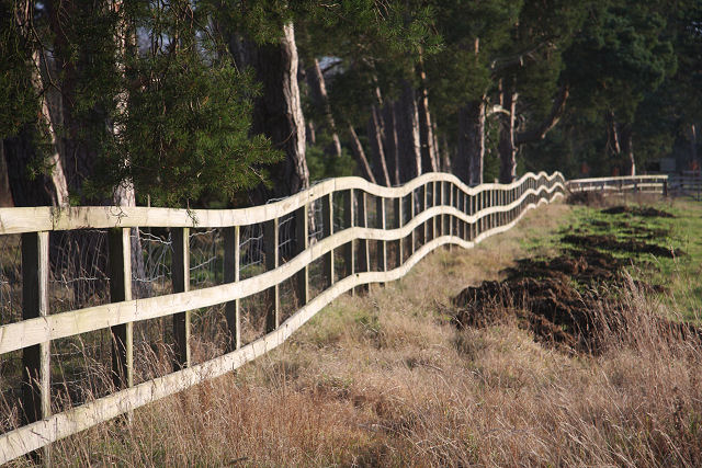 Wibbly wobbly fence, Herringswell