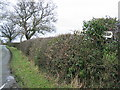 SJ4348 : Guidepost in the hedge near Shocklach by John S Turner