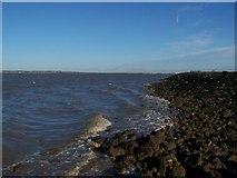 TQ7178 : Limit of Winter Low-tide by David Anstiss