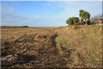 SD3642 : Debris-strewn Footpath by Bob Jenkins