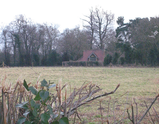 View across grassland to artist's studio