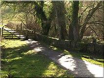SX8158 : Dart Valley Trail by Derek Harper