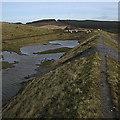 SN7391 : Dam of breached mine pond at Esgair Hir by Rudi Winter
