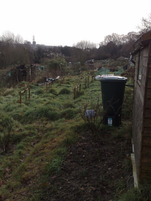 Grants Meadow  allotments, Colchester