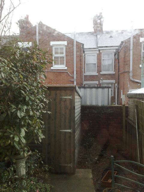 Back garden, Victor Road, Colchester