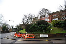 SU9948 : Rookwood Court, Portsmouth Rd by N Chadwick