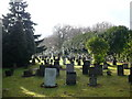 TQ4571 : Another corner of Chislehurst Cemetery by pam fray