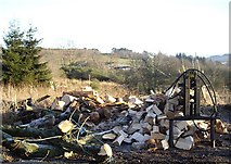 NJ6102 : From logs to kindling by Stanley Howe
