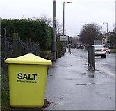 NS3526 : Salt bin by Thomas Nugent