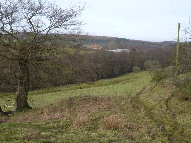 Earthworks in the valley below Howthorpe Farm