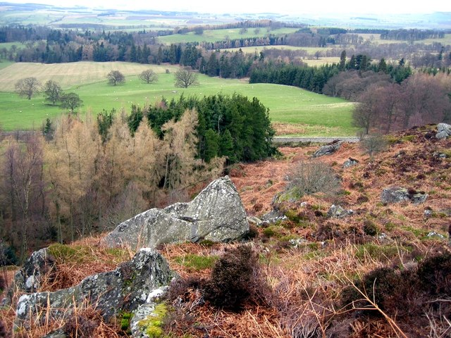 Above the forest at Hepburn Crags