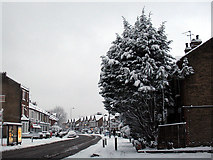 TQ4077 : Charlton Road in the snow - 2 by Stephen Craven