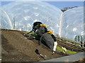 SX0454 : Bee Sculpture by Roddy Urquhart