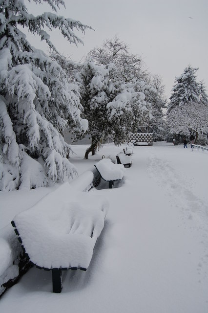 Snow covered benches on the terrace outside Bourne Hall