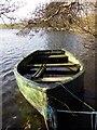 NY0882 : The Rowing Boat by Colin Kinnear