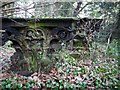 NZ1265 : Garden Ornaments lost in the woods west of Close House by Andrew Curtis