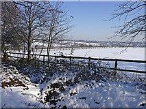 TQ2996 : Ditch, Trent Park, Enfield by Christine Matthews