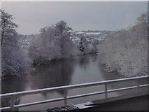 SX9193 : River Exe from the railway by Derek Harper