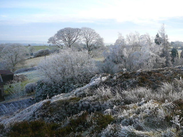 A winter's day on Marshes Hill near Brown Edge.