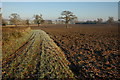 SO8246 : Ploughed field, near Guarlford by Philip Halling