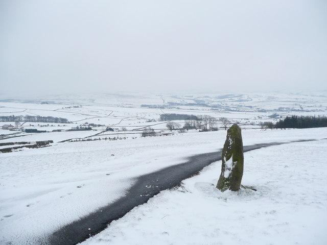 Marker Stone Near Harwes Farm (Copy House)