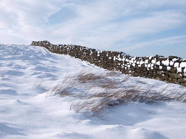 Dry stone wall, Newton Moor