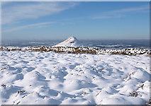 NZ5812 : Snow on Newton Moor by Stephen McCulloch
