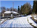 NU0503 : Primrose Cottage by Andrew Curtis