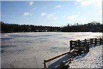 SD8632 : Rowley Lake by Kevin Rushton