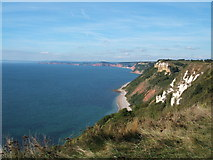 SY1687 : Dunscombe Cliff from Weston Combe by Peter Barr