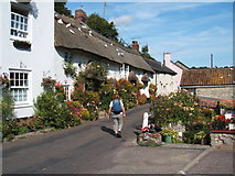 SY1988 : Branscombe, flower displays and doves on thatched roof by Peter Barr