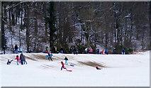 NJ0459 : Fun in the Snow at  Grant Park by Ann Harrison