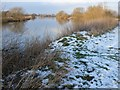 SK4530 : River Trent near Sawley by Andy Jamieson