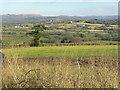 ST0675 : Farmland around Pendoylan and beyond by Mick Lobb