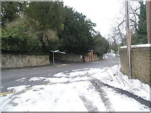 SU9948 : View from Chestnut Avenue across Guildown Road towards Beech Lane by Basher Eyre
