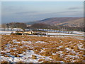 NY8446 : Moorland near Slag Hill Cottages by Mike Quinn